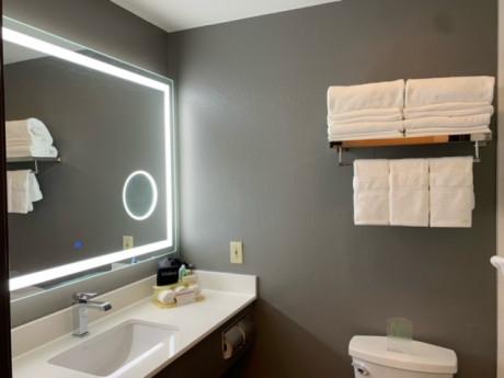 Welcome To Holiday Inn Express & Suites Santa Clara - Bathroom